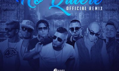 RKM Ft. Yomo, Jowell, Maximan, Javerik, Mario Hart y Trebol Clan - No Quiere (Official Remix)